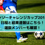 【デンソーカップチャレンジサッカー2019堺】日程と結果速報はこちら!選抜メンバーも確認!