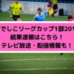 【なでしこリーグカップ1部2019】結果速報はこちら!テレビ放送・配信情報も!