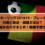 【ベルギーリーグ201819プレーオフ1】日程と放送・視聴方法は?全組み合わせまとめ!優勝予想も!