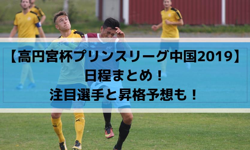 【高円宮杯プリンスリーグ中国2019】日程まとめ!注目選手と昇格予想も!