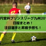 【高円宮杯プリンスリーグ九州2019】日程まとめ!注目選手と昇格予想も!