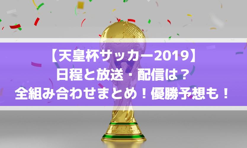 【天皇杯サッカー2019】日程とテレビ放送・配信は?全組み合わせまとめ!優勝予想も!