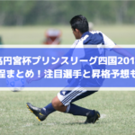 【高円宮杯プリンスリーグ四国2019】日程まとめ!注目選手と昇格予想も!