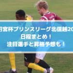 【高円宮杯プリンスリーグ北信越2019】日程まとめ!注目選手と昇格予想も!