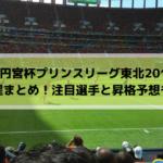 【高円宮杯プリンスリーグ東北2019】日程と組み合わせまとめ!注目選手と昇格予想も!