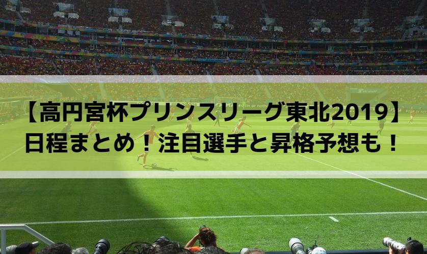 【高円宮杯プリンスリーグ東北2019】日程まとめ!注目選手と昇格予想も!