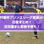 【高円宮杯プリンスリーグ東海2019】日程まとめ!注目選手と昇格予想も!