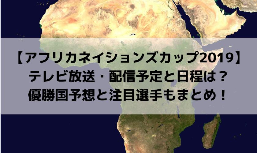 【アフリカネイションズカップ2019】テレビ放送・配信予定と日程は?優勝国予想と注目選手もまとめ!