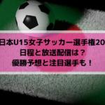 全日本U15女子サッカー選手権2019の日程と放送配信は?優勝予想と注目選手も!