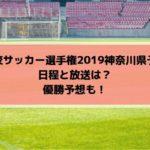 高校サッカー選手権2019神奈川予選のテレビ放送と日程・組み合わせは?優勝予想も!