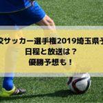 高校サッカー選手権2019埼玉県予選の日程・組み合わせとテレビ放送は?優勝予想も!