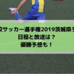 高校サッカー選手権2019茨城県予選の日程・組み合わせとテレビ放送は?優勝予想も!