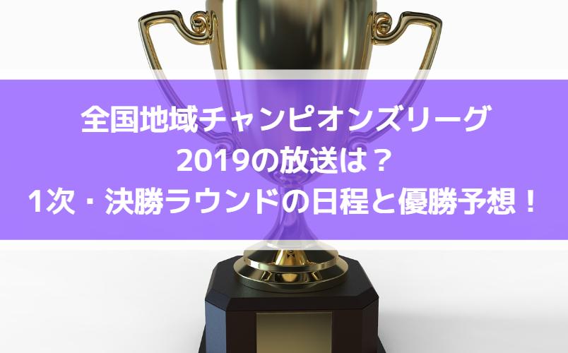 全国地域サッカーチャンピオンズリーグ2019の放送・中継と出場チームは?1次・決勝ラウンドの日程と優勝予想も!