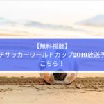 【無料視聴】ビーチサッカーワールドカップ2019放送予定はこちら!
