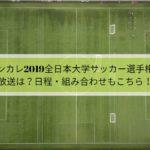 インカレ2019全日本大学サッカー選手権の放送は?日程・組み合わせもこちら!