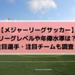 MLSの日本人・有名選手や年俸は?レベル・日程・放送に注目チームも!