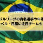 サッカーブラジルリーグの放送は?有名注目選手や日本人・年俸・レベル・日程も!