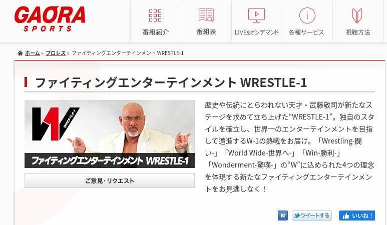 ファイティングエンターテインメント WRESTLE-1 - プロレス - GAORA
