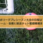 WEリーグプレシーズン大会の日程は?出場チーム・会場と放送ネット配信情報まとめ!