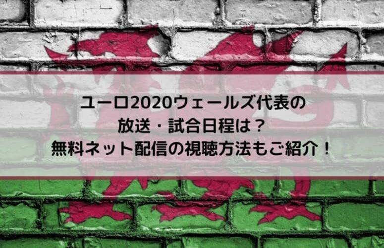 ユーロ2020ウェールズ代表の放送・試合日程は?無料ネット配信の視聴方法もご紹介!
