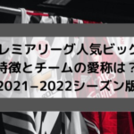 プレミアリーグ人気ビッグ6特徴と チームの愛称は? 【2021−2022シーズン版】